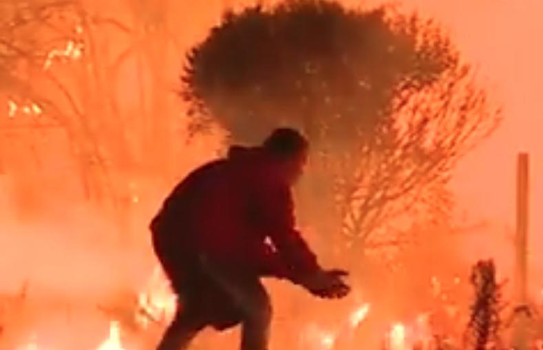 Ata nuk mundën të kuptojnë se çfarë po bënte ai afër zjarreve! Pastaj ata panë këtë...