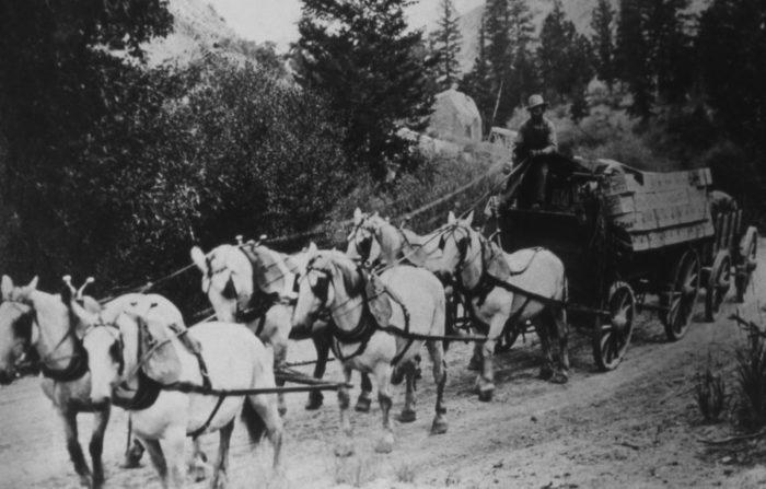 I pari në Gjirokastër me Talika, karroca e tërhequr nga 6 kuaj, dhe historia e mbiemrit Bediava