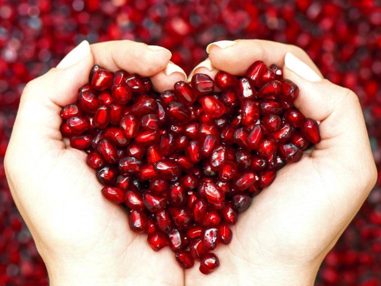 SHEGA - Fruti i rrallë shërues, çfarë simbolizon, dhe e veçanta në dasmat Gjirokastrite!