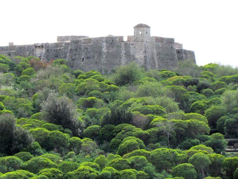 Evlia Celebiu zbulon pse Kështjella e Tepelenës quhet kështu...