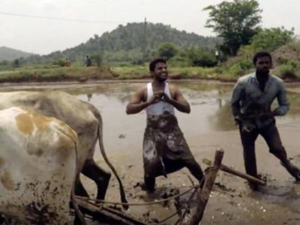 Sfida Kiki - Dy indianë fermerë marrin famë botërore me kërcimin e këngës Kiki nga Drake.
