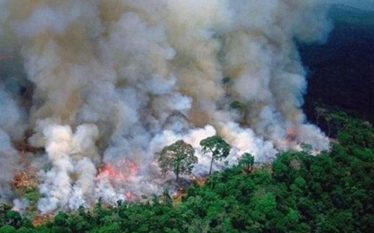 Pyjet e Amazonës u dogjën për 3 javë! Pse ne e morrëm vesh vetëm tani?