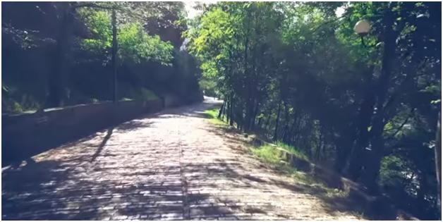 Kurorës së Gjelbër të Rrugës së Nënkalasë në Gjirokastër i Shtohen edhe 20 Pemë Bli