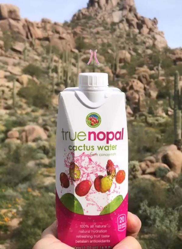 A e dini se tani raftet neper dyqane po i ze uji i kaktusit ?
