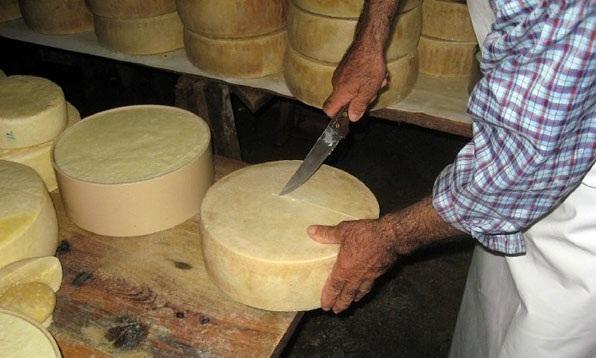 Libohova e dëgjuar dhe për prodhimin e djathit, me nam në gjithë vendin