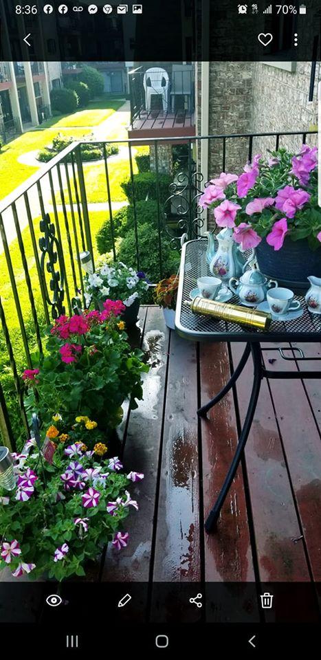 Mesoni per ballkonin me lule e ereza te Gjirokastres qe e kane zili edhe familjet amerikane
