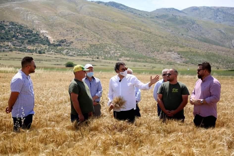 """Njihuni me Fermën """"Agro Beqari"""" në Dropullin e Sipërm, shembull në prodhimin e grurit"""