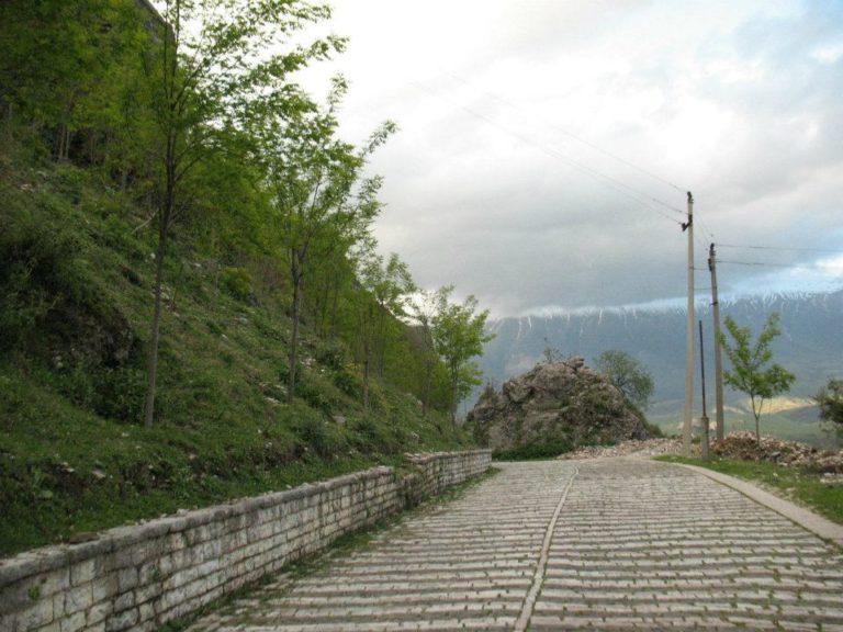 """""""Lulet e bajameve""""në shkëmbin e vetmuar të ndënkalasë në Gjirokastër, kujtim i dikujt apo i të gjithëve?!"""