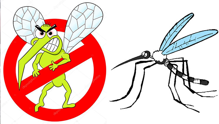 Shpetoni njehere e mire nga mushkonjat kete vere me keto dy metoda te thjeshta