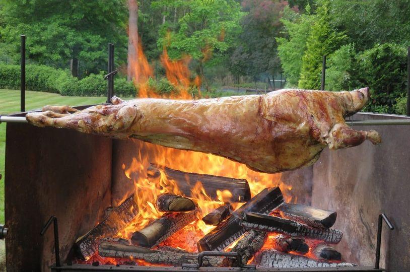 Mish ne hell, jo për të ngrënë, por për të mësuar...