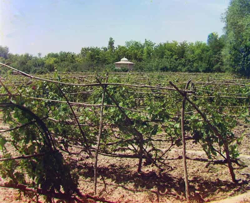 Emri i mire dhe sekreti i shijes ne vererat qe prodhohen ne Gjirokaster