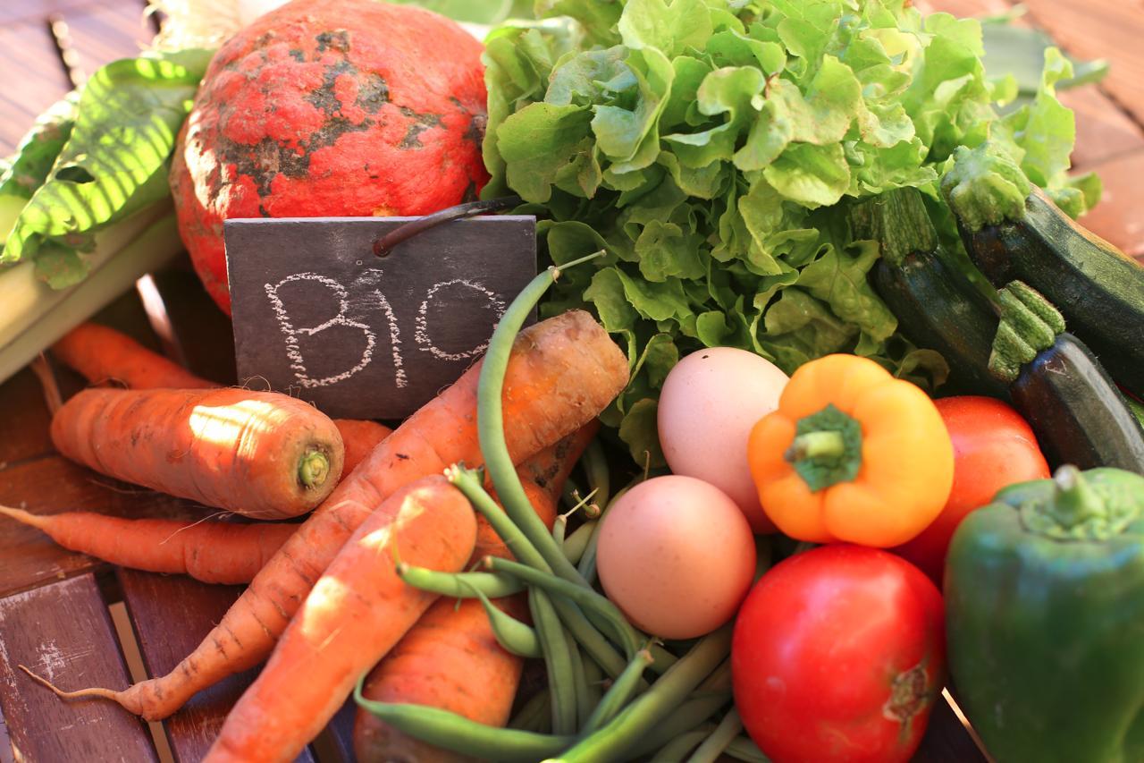A jane frutat dhe zarzavatet organike me te ushqyeshme?
