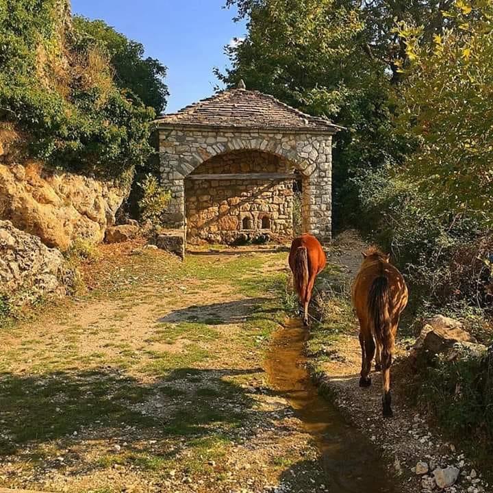 Gjeni emrin e fshatit me 16 kisha, 1 manastir te vitit 1600 ku turistet francezet shijuan per here te pare gorica...